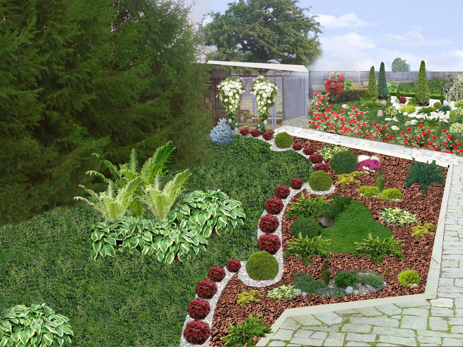 Клумбы с лилиями на даче, фото композиций и рекомендации